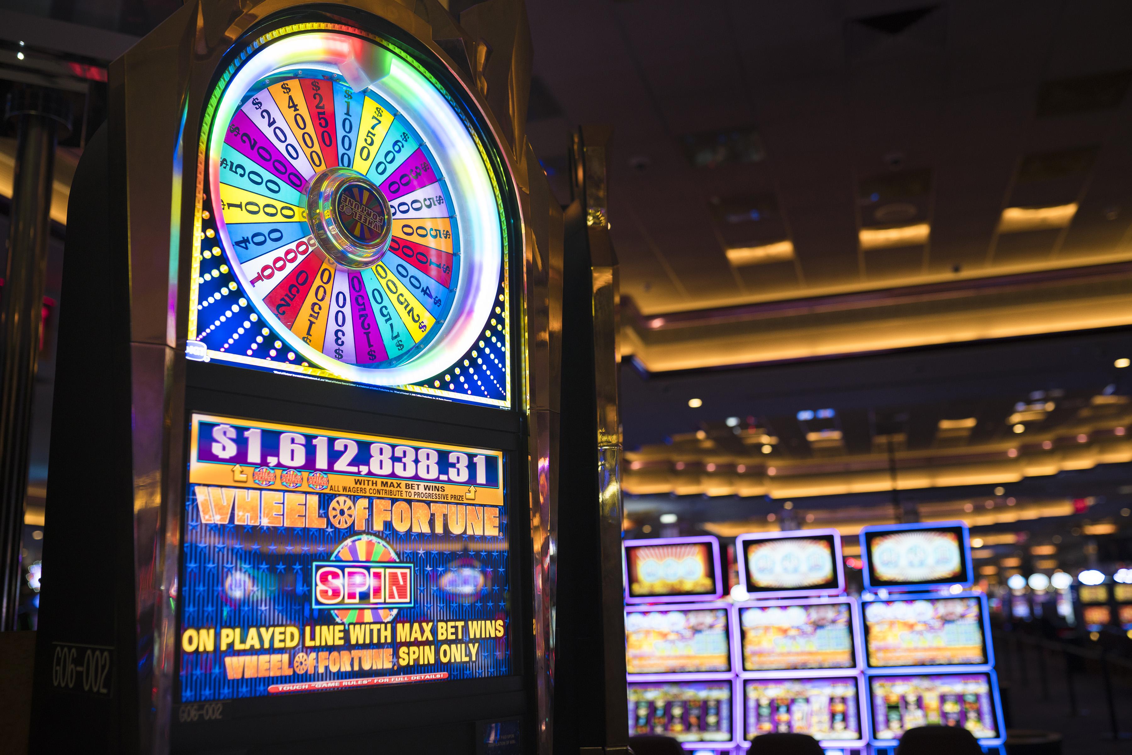 казино буи казино официальный сайт играть