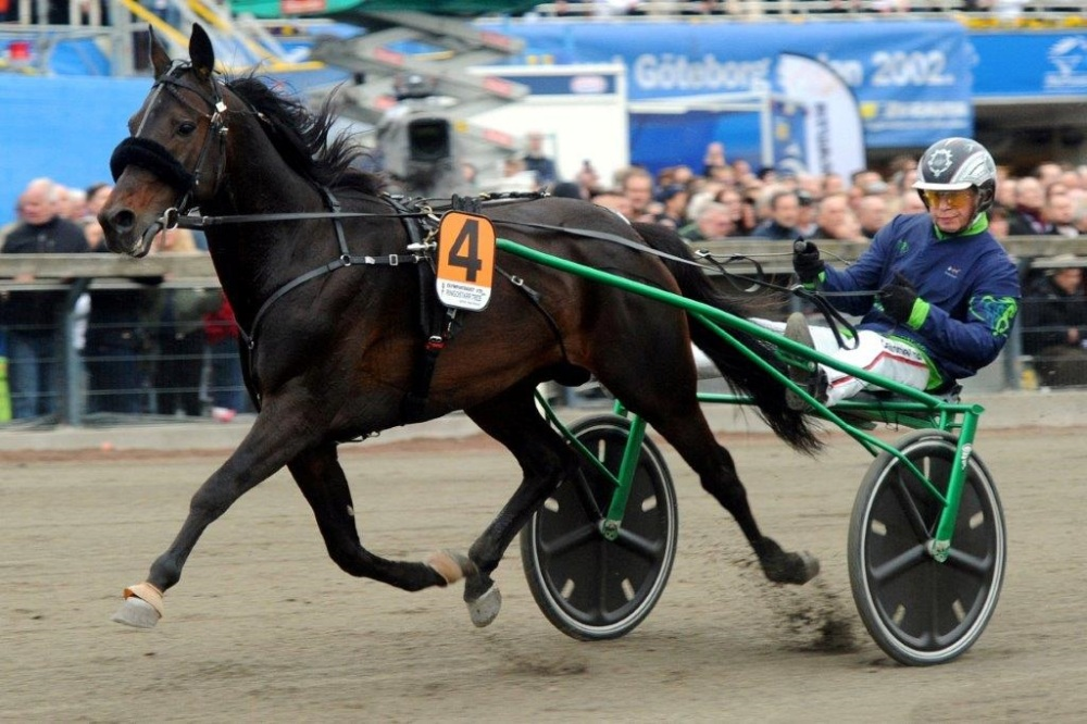 Belmont And Yonkers Offer Thoroughbred/Standardbred Pick 4